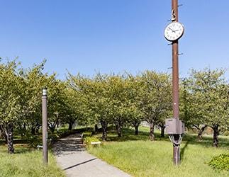 西郷川河口公園の時計台